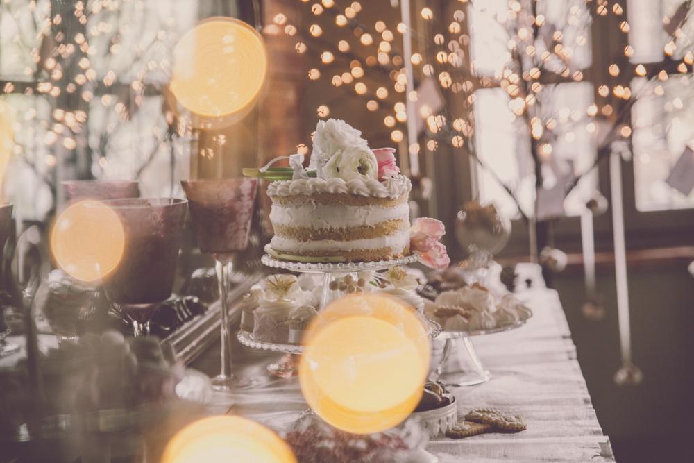 Winter Wedding Sant'Anna 2017-46