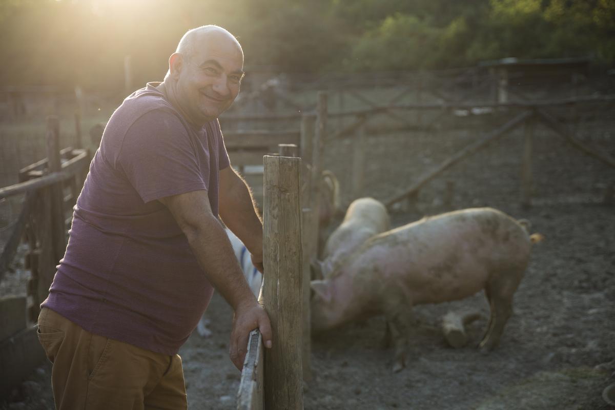 PigsLife2019-61